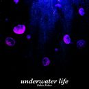 undefined cover art