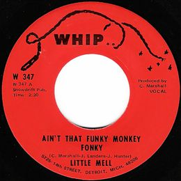 Ain't That Funky Monkey Fonky cover art